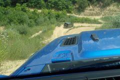 Jeep_80lat_2021_16