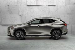 LexusNX_2021_AutoRokTest_10