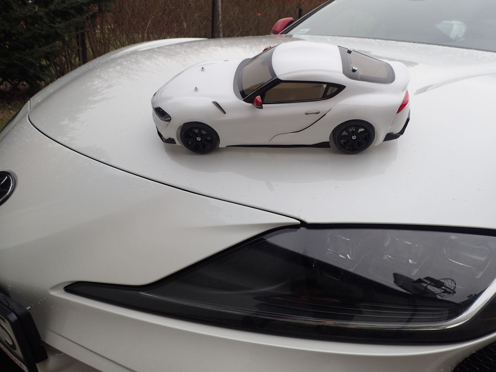 Tamiya Toyota GR Supra